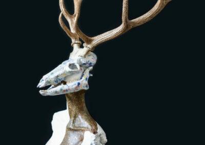 projekt indywidualny szamanka